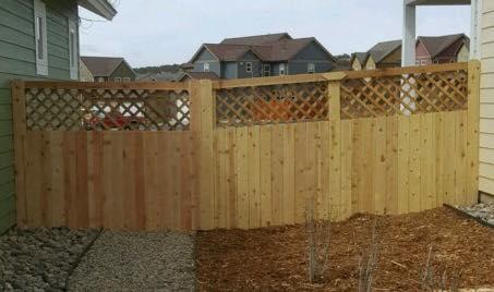 Cedar Privacy fence (1)